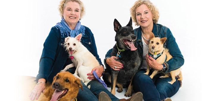 Volunteer | Humane Society for Southwest Washington